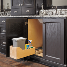 Waste Container Bottom Mount with Removable Polymer Bin for Bathroom/Vanity