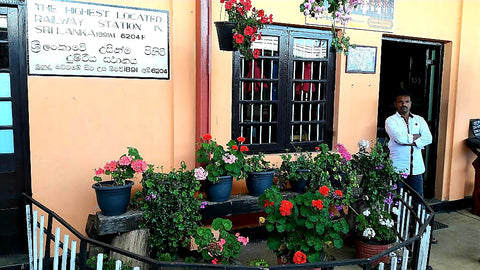 Australian Cricket Tours - Railway Stations In Sri Lanka Are Very Well Kept With Flowers, Plants, And Care