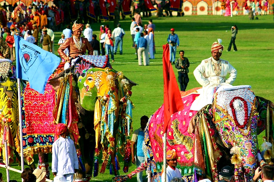 Australian Cricket Tours - Exquisitely Painted Elephants Parade With Vivid Colour And Artistry At The Elephant Festival In Jaipur