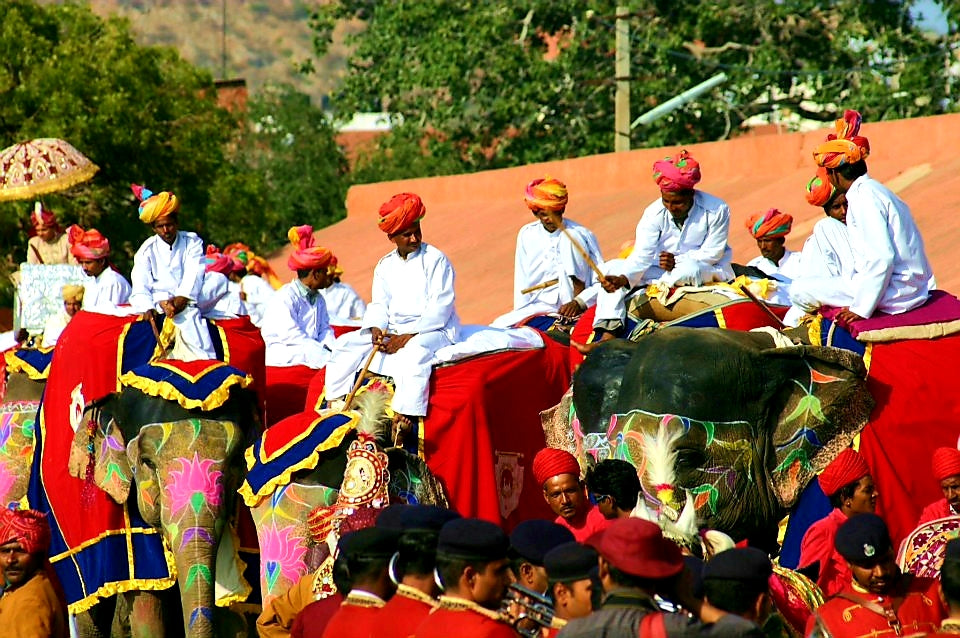 Australian Cricket Tours - Religious, Social, And Elephant Festivals Are An Integral Part Of Life India. Here The Colour And Passion Displayed Is What Makes These Festivals Stand Out   India