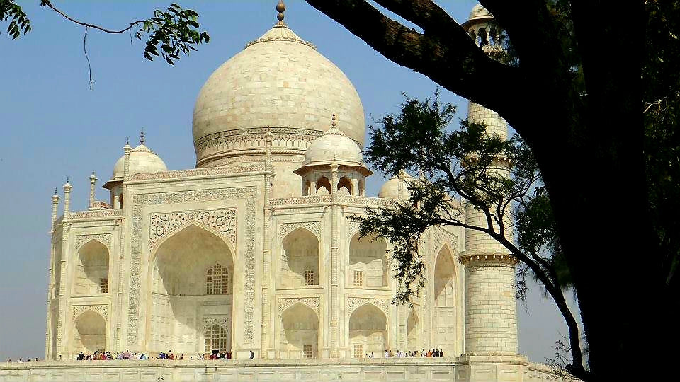 Australian Cricket Tours - The Impressive Taj Mahal Seen Through The Trees On Our Cricket Tour Pilgrimage To Agra, India
