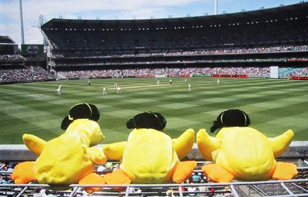 Australian Cricket Tours - Three Toy Ducks Wearing Australian Baggy Green Cricket Caps Lined Up On The Boundary Fence At The Melbourne Cricket Ground (M.C.G.)