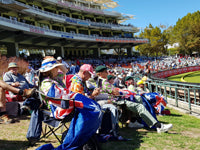 Australian Cricket Tour - Spectating At The Cricket, Newlands Cricket Stadium, Cape Town, In South Africa