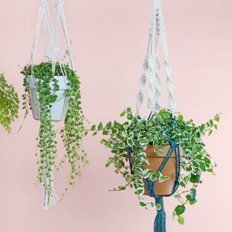Beginners Macrame Plant Hanger Workshops in Central London. Learn Macrame like a Pro! London's Top Craft School