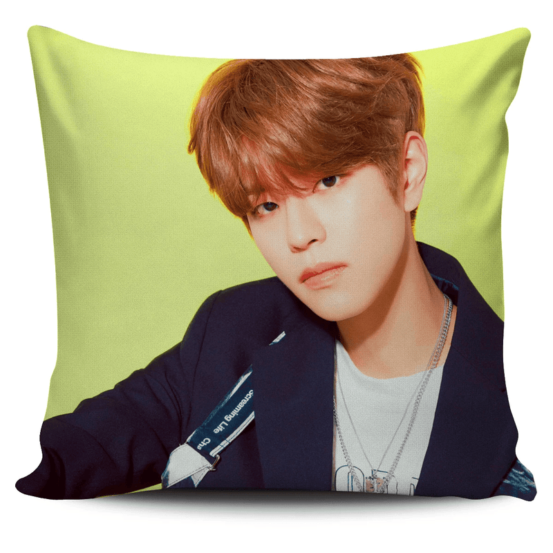 SKZ2020 Pillow Cover