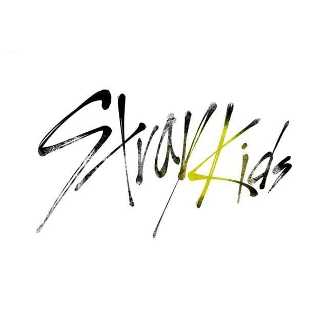 Stray Kids Printed Satin Poster