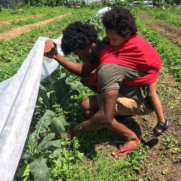 Mill Creek Urban Farm