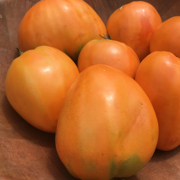 Coeur de Boeuf Orange Tomato