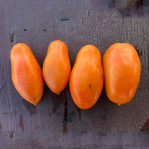 Orange Banana Plum Tomato
