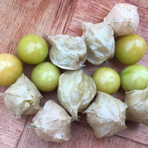 Aunt Molly's Ground Cherries