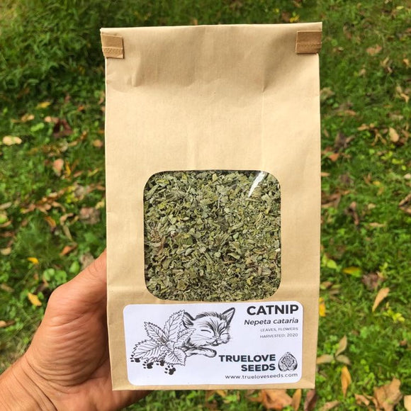 Catnip (Dried Herb)