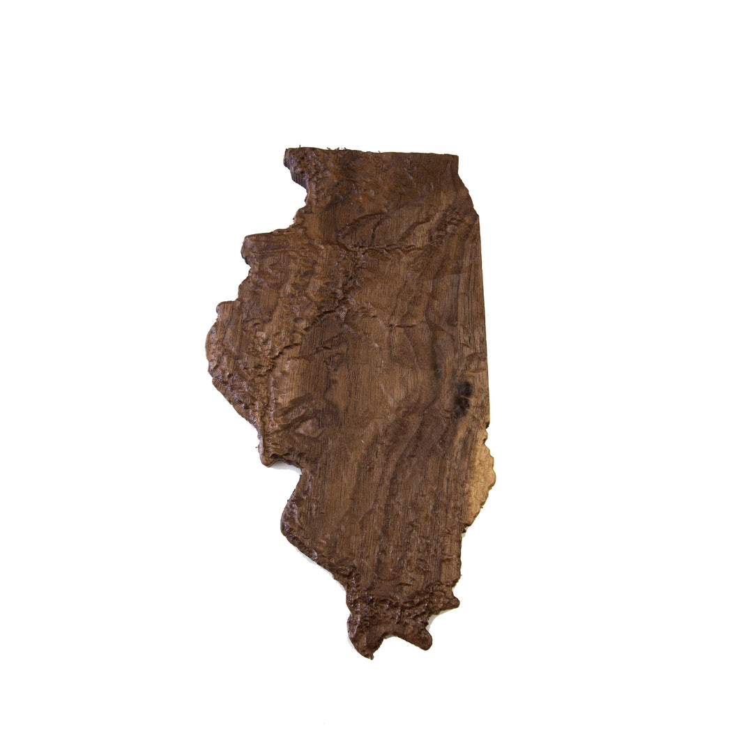 Image of a wooden topographic map of Illinois