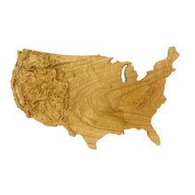 Image of a wooden topographic map of The Continental US