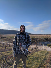 Connor Book pruning Estate vineyard Pinot Noir