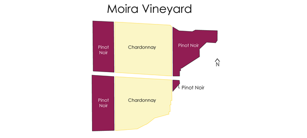 Moira Vineyard Map of Plantings