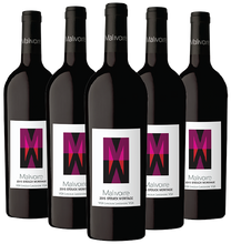 2016 Stouck Meritage, VQA Lincoln Lakeshore, Malivoire Wine Co.