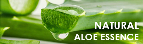 Aloe Vera Anti-Aging Face Cream