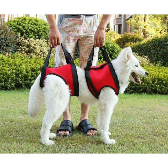 Elevator dogs dogs Harness Lift Rehabilitation Support make the most of support to assist seniors dogs or joint disease (S (Back Paw), Red)