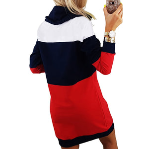 Striped Hooded Turtleneck Sweatshirt Dress - Raen Wear