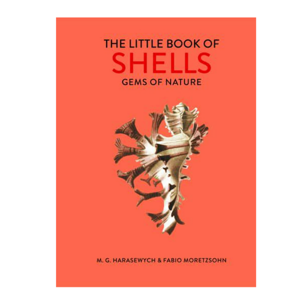 The Little Book Of Shells