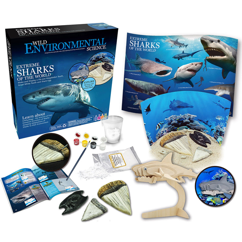 Extreme Science Kit Sharks Of The World Wild Science