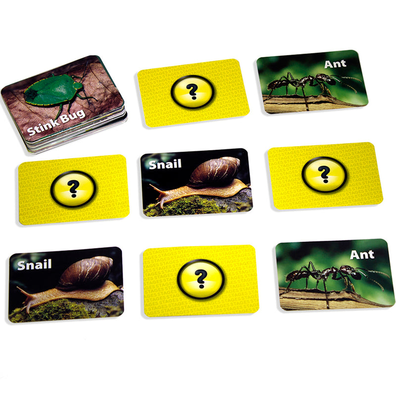 (3 Ea) Insects & Bugs Photographic Memory Matching Game
