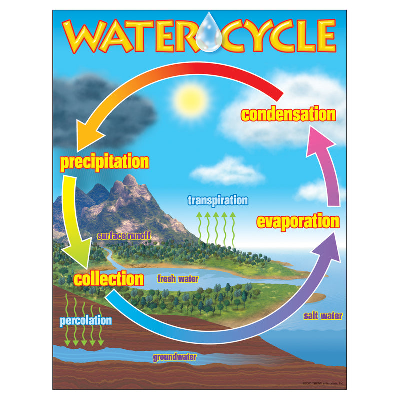 (6 Ea) Chart The Water Cycle