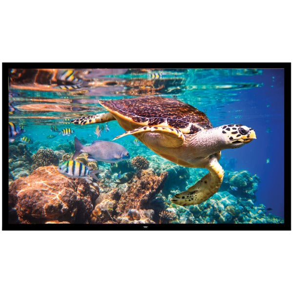 Fixed Wall-Mount Projector Screen (120-Inch)