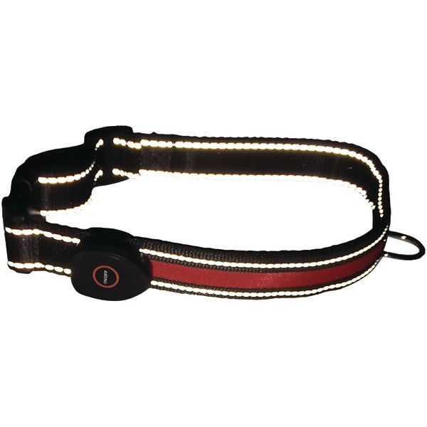 LED Dog Collar (Small)