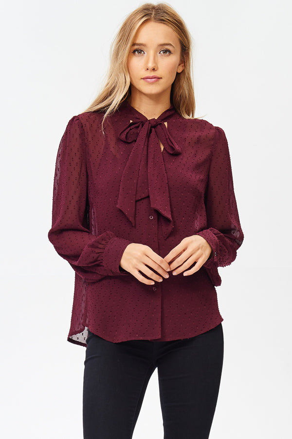 Sheer Long Sleeve Neck-Tie Blouse (JT914)