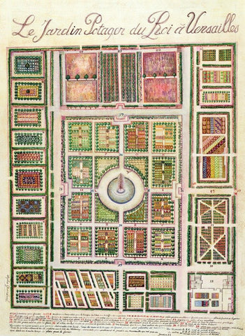 The vegetable garden of Louis XIV
