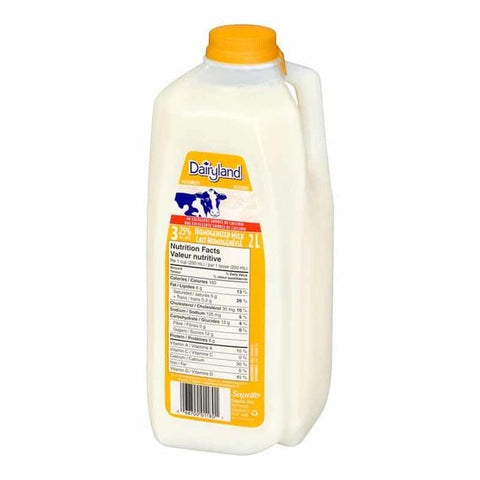 Dairyland 2l Homo Milk