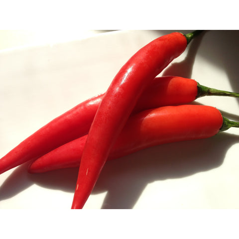 Red Thai Chilli