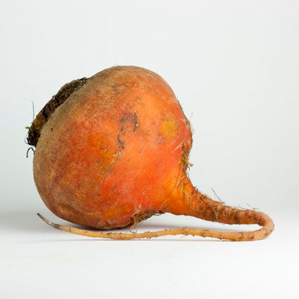 Beets Gold (per pound)