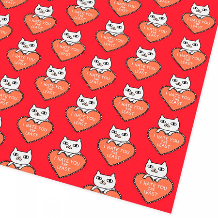 Cat Love Greetings Card