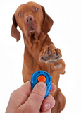 Training Your Dog With a Clicker