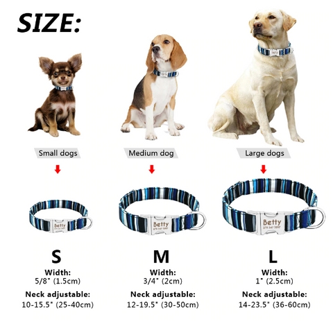 PET-icure Pet Grooming & Supplies Engraved Dog Collar Pepperell Massachusetts 01463 Sizing Chart