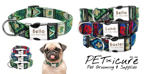 Star Pet Products Custom Collars PET-icure Pet Grooming & Supplies Pepperell Massachusetts 01463 Peticure Graphic