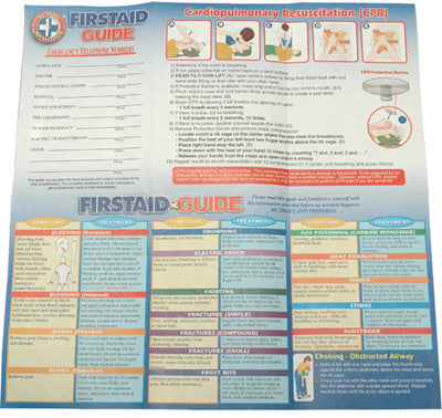 100 Comprehensive First Aid Guide
