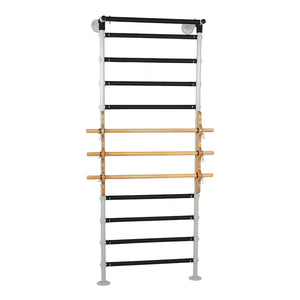 Shoulder Finger Ladder