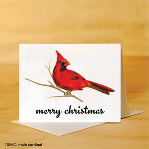 Printed Canvas Greeting Card- Red Cardinal w/ Merry Christmas