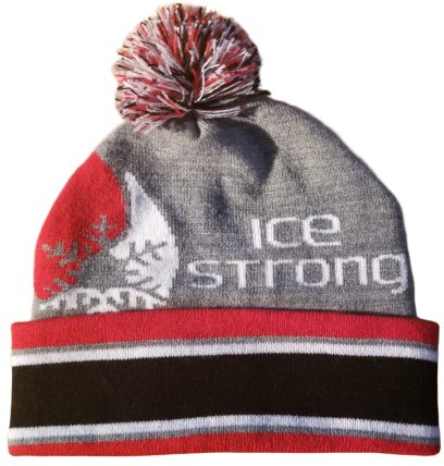 **NEW for 2019 Gray Pom Beanie