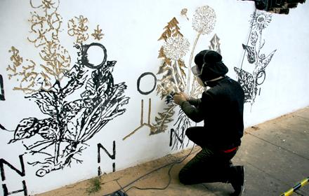 PLANT GRAFFITI :: LONDON'S PHYTOLOGY PROJECT