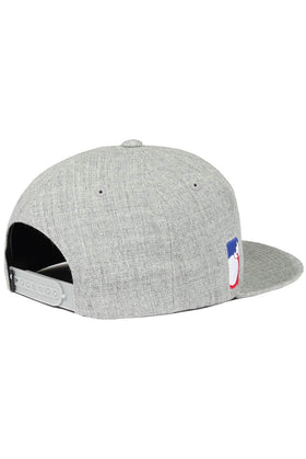 The Hundreds Forever Team Snapback Cap Athletic Heather Back