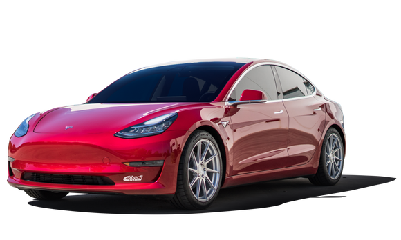 Tesla Model 3 Eibach Lowering Springs