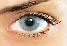 Icy Gray Colored Contacts - Color COntact Lenses - Hidrocor Contacts