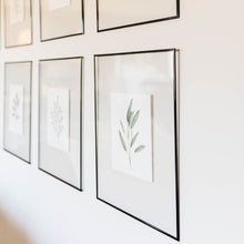 Herb Wall Art - Arugula