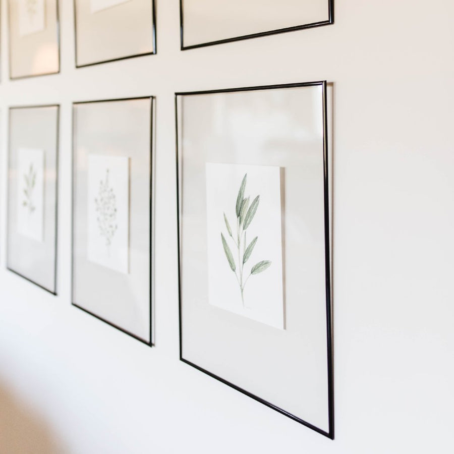 Herb Wall Art - Cilantro