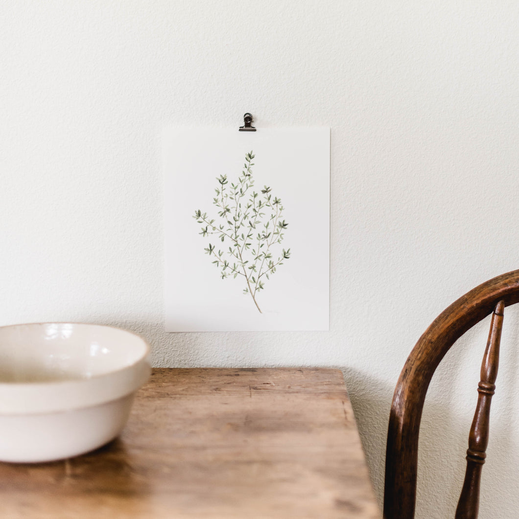 Herb Wall Art - Thyme