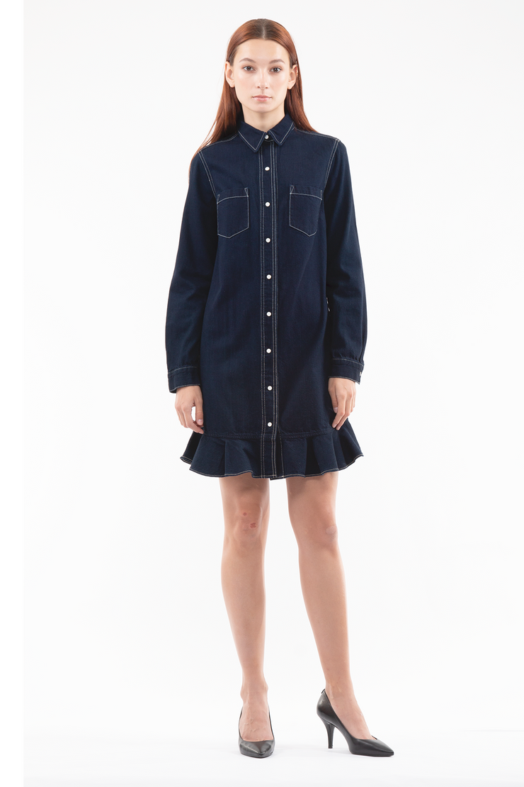 Jessie Long Sleeve Dress in Scene